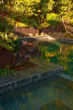 A tranquil pool in a family garden brings about relaxation and beauty.