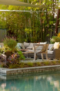 Ac omfortable lounging area is surrounded by drought tolerant plants