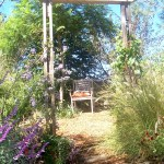 relaxing chair under tree amongst grasses and perennials