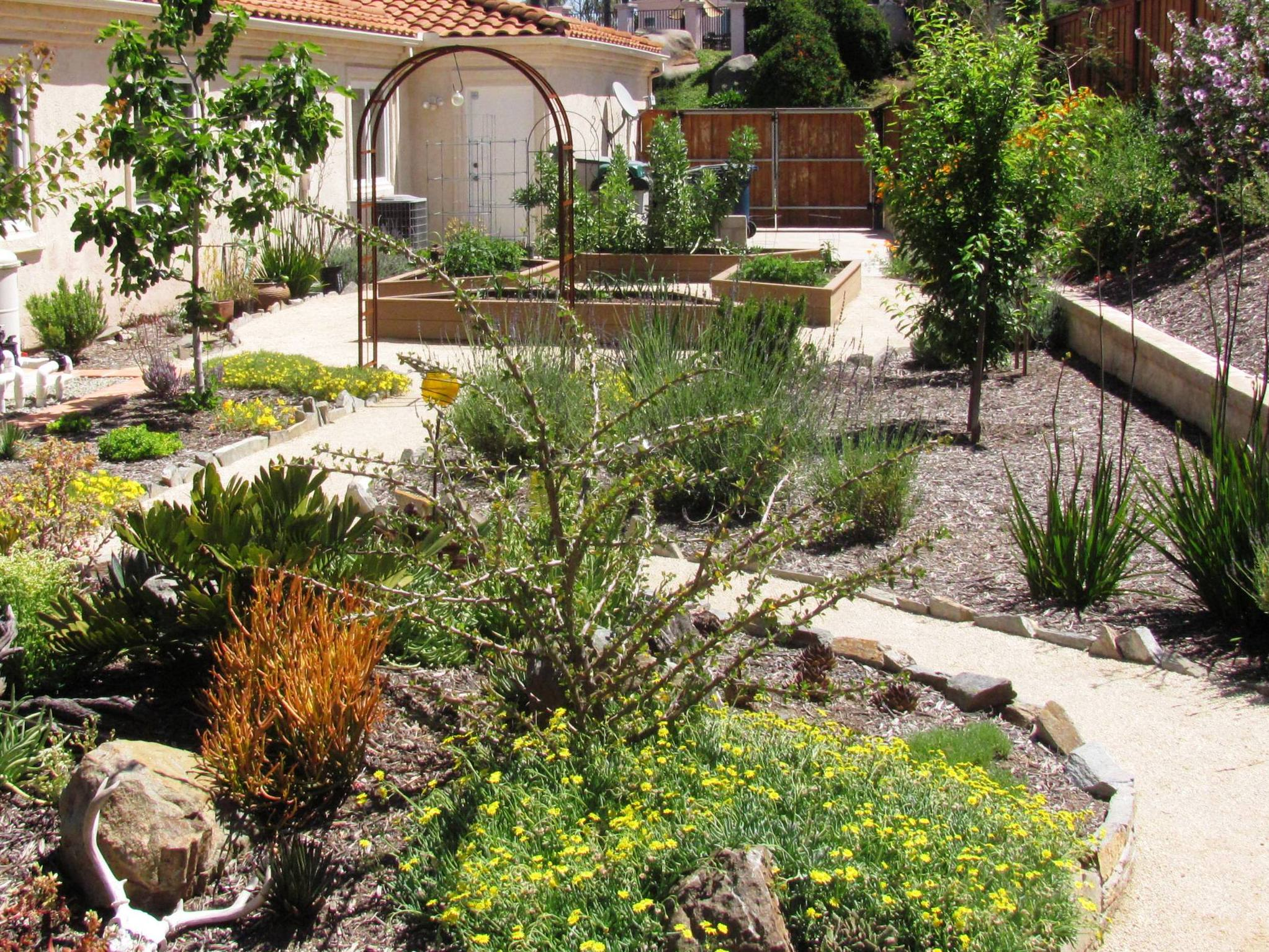 Front Yard Xeriscape Ideas Part - 47: Award Winning Xeriscape In San Diego