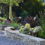 lush and waterwise landscape design