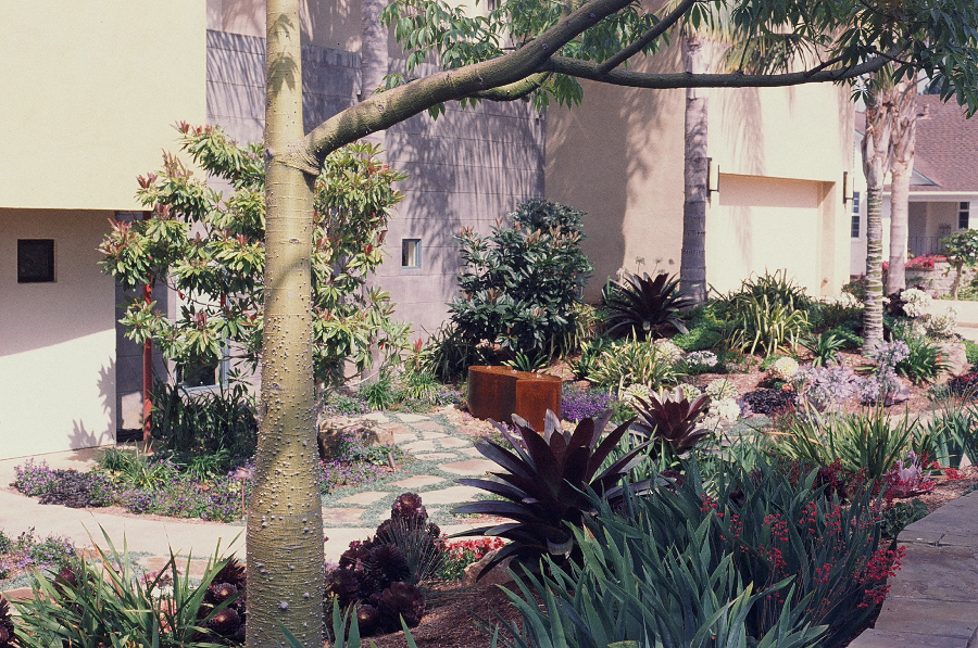 landscape design in carlsbad