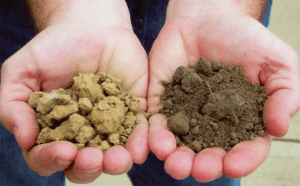 Knowing your soil