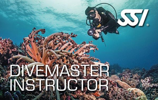 Dive Master Instructor