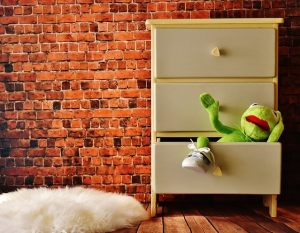 A frog toy in a drawer