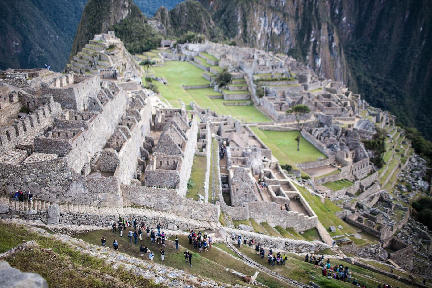 Life List 120 See Machu Picchu Choosing Figs