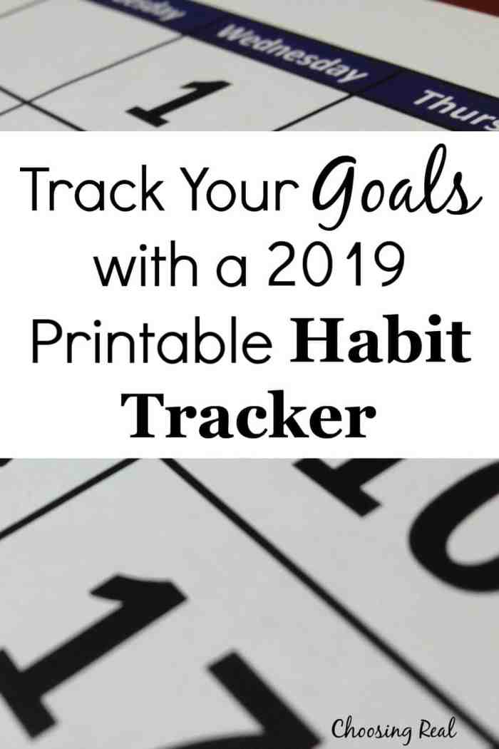 Using this 2019 habit tracker calendarcan help you meet your daily goals. Simply print out calendar and mark off each day you meet your daily goal.