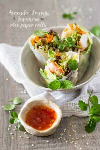 Japanese rice paper rolls 生春巻き