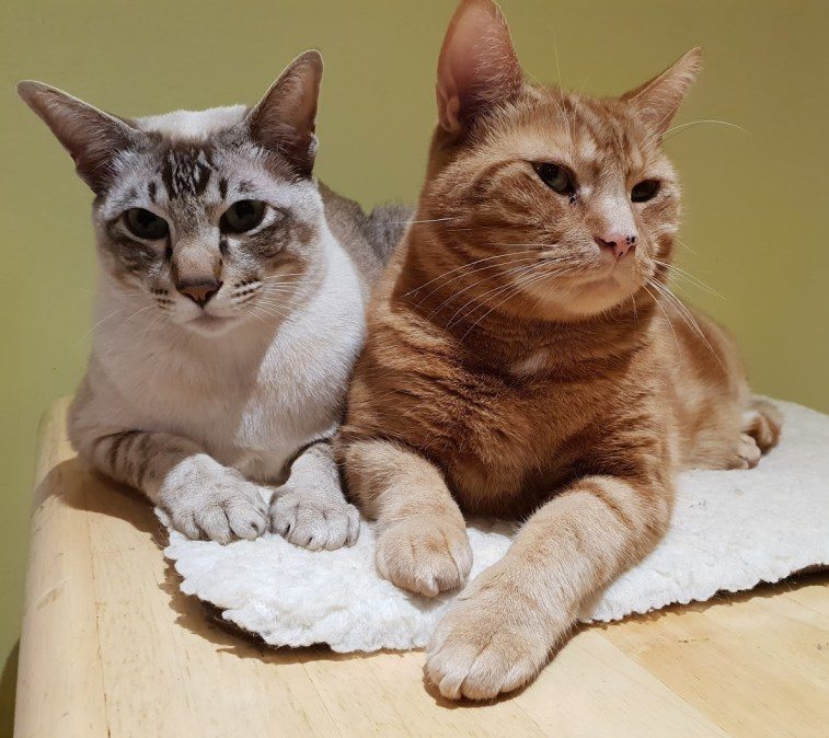 Monty & George