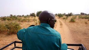 Koiré Niger