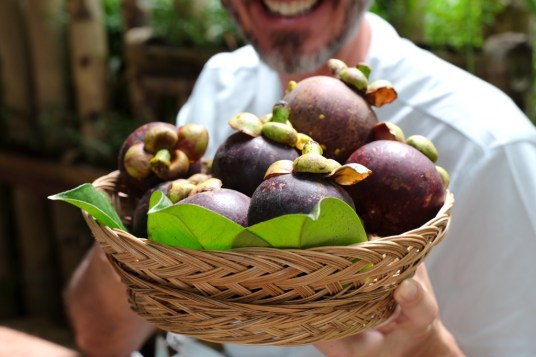 Mangosteens right from the tree!