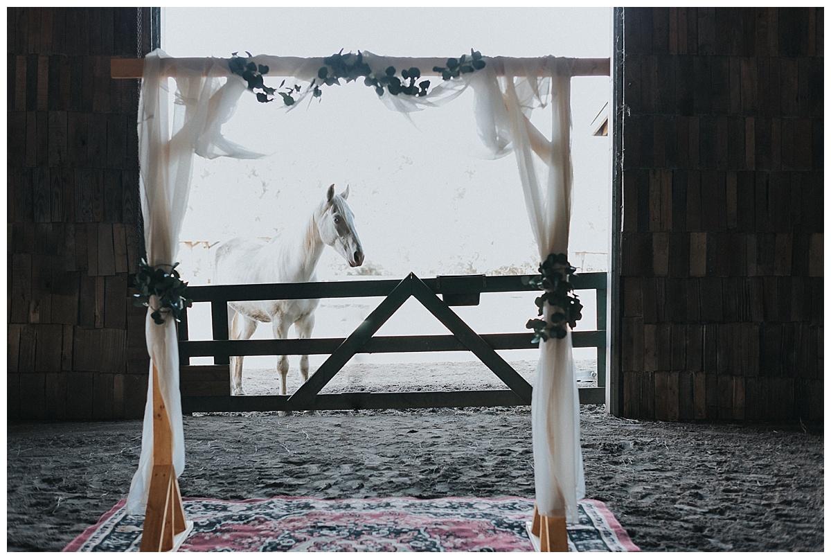 Rustic-Barn-Wedding-Halifax-Nova-Scotia_28.jpg