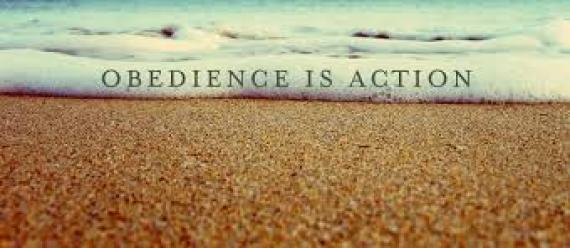 obedience-action