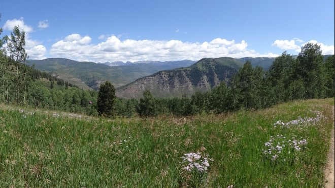 Meadow Mountain - Looking north towards the Gore range