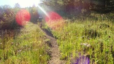 September: Boulder country trails in prime season
