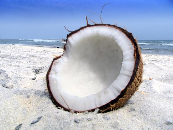 Why I'm Nuts for Coconuts!!!