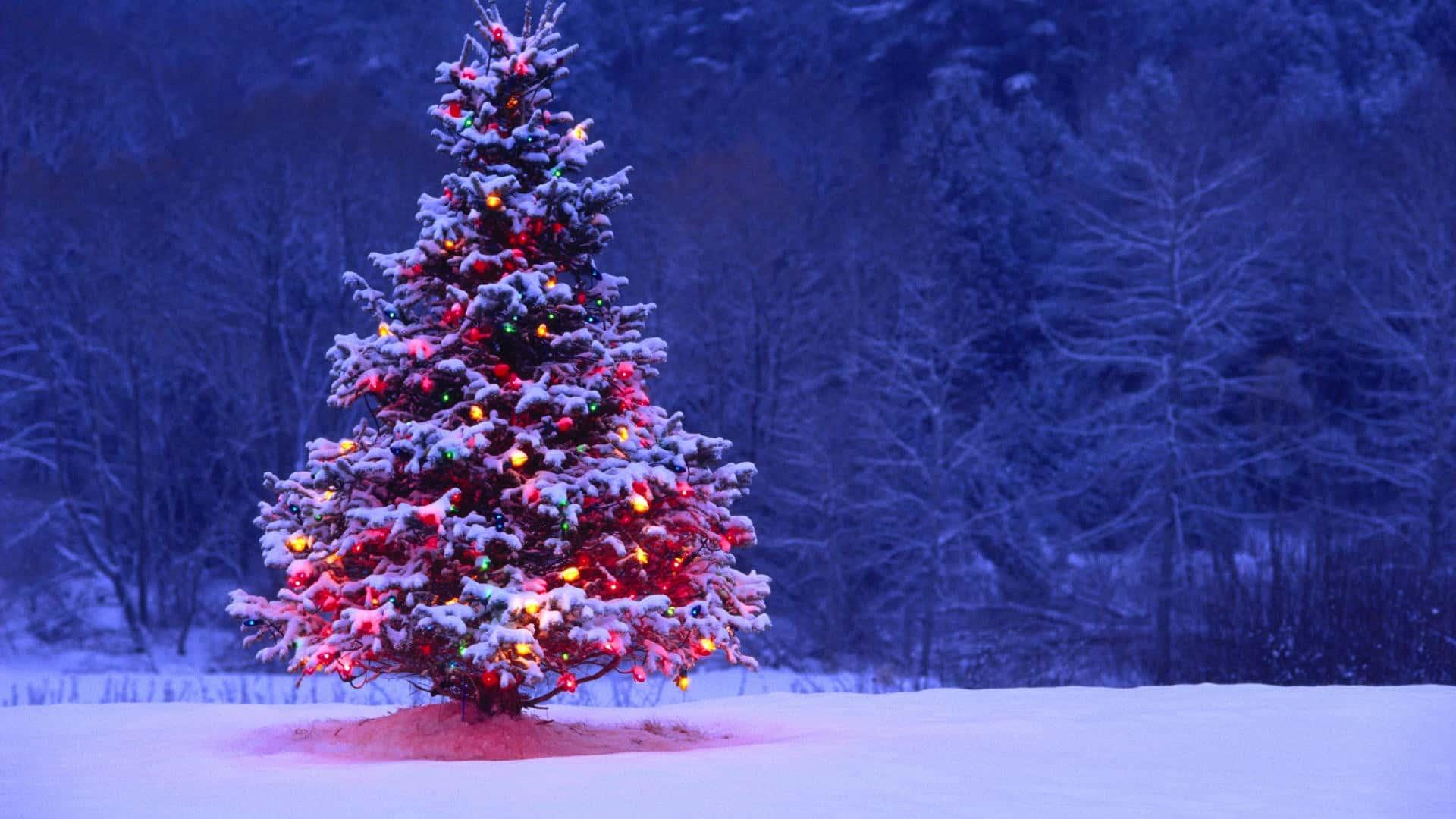 Christmas tree hd wallpapers best desktop images widescreen voltagebd Gallery