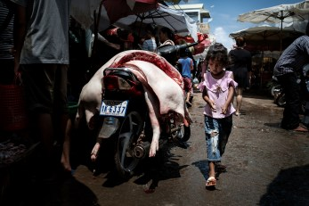 girl and butchered pig in a Cambodian market