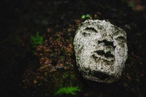 face at Angkor temple