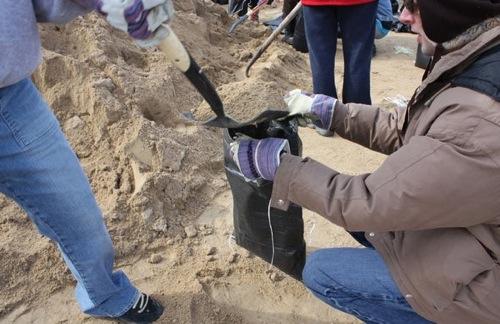 Sandbagging Volunteers