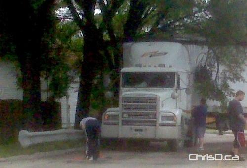 Semi-Trailer Truck - Tree