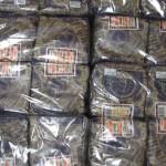 RCMP Tobacco Seizure - India Spice House