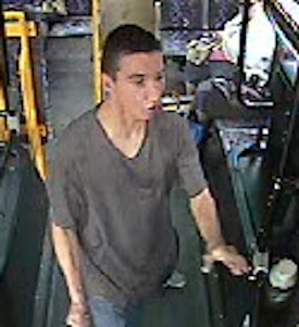 Winnipeg Transit Suspect