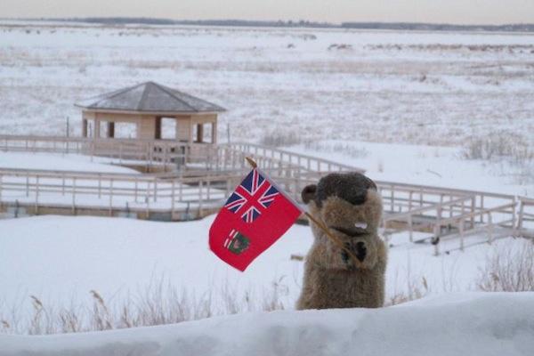 Manitoba Merv