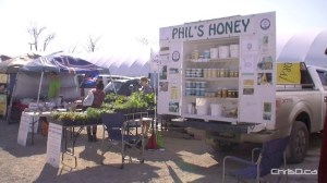 Phil's Honey