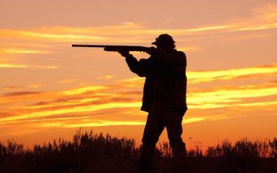 Several Arrested for Illegally Night Hunting in Manitoba