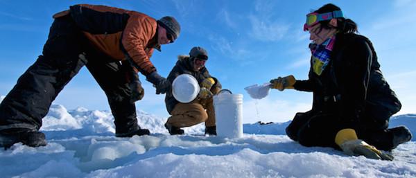 Arctic Researchers