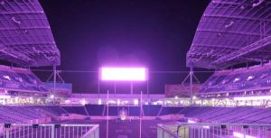 Investors Group Field - Purple