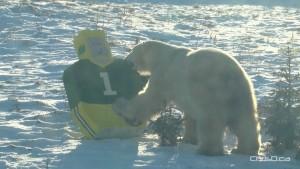 Polar Bear - Edmonton Eskimos