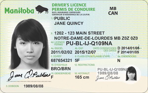 Manitoba Driver's Licence