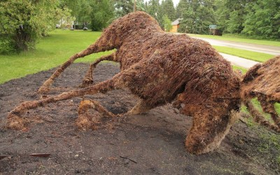 Vandals Topple Topiary Moose in Clear Lake