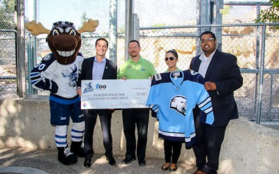 Manitoba Moose Present Cheque for $11K to Assiniboine Park Zoo