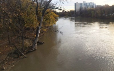 Dry Summer Means Lower Water Levels on Red, Assiniboine Rivers