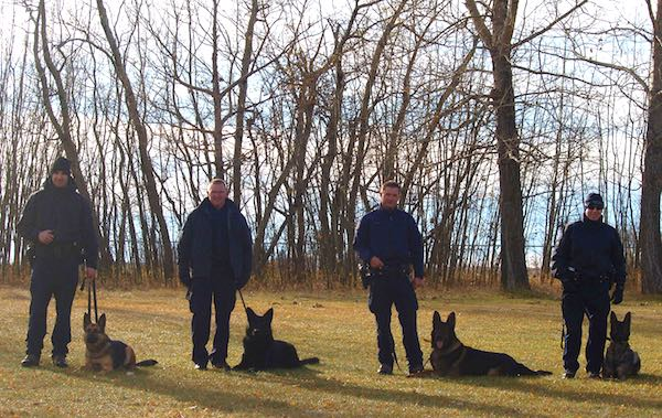 RCMP Dog Training