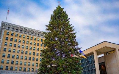 Polo Park Mall Lighting 26-Foot-Tall Christmas Tree