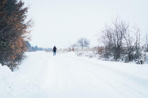 Winter - Walk - Snow