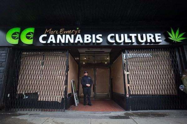 Marijuana Raid