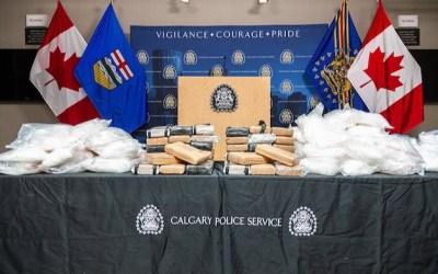 Drug Investigation Started by Winnipeg Police Ends with $10M Seizure