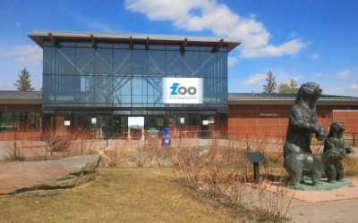 Assiniboine Park Zoo to Reopen with COVID-19 Restrictions
