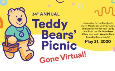 Teddy Bears' Picnic Goes Virtual