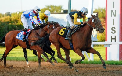 Payout Shocker in the Escape Clause Stakes
