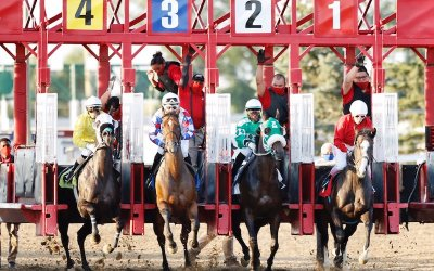 Record Handles at the Downs Lead to Permanent Schedule Changes