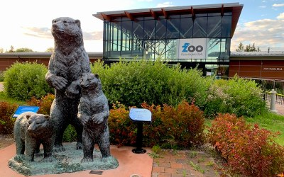 Assiniboine Park Zoo Reopening After Provincial Approval