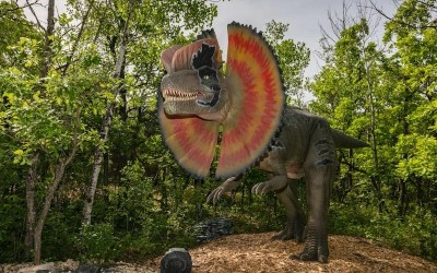 Assiniboine Park Zoo Reopening with 'Dinosaurs Uncovered' Exhibit