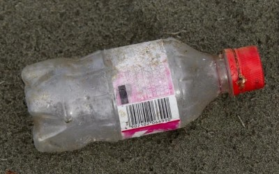 Shoreline Cleanup Finds COVID-Related Trash Increased During Height of the Pandemic