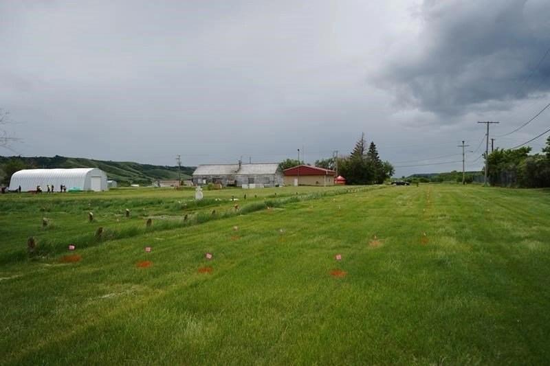 Saskatchewan - 751 Graves
